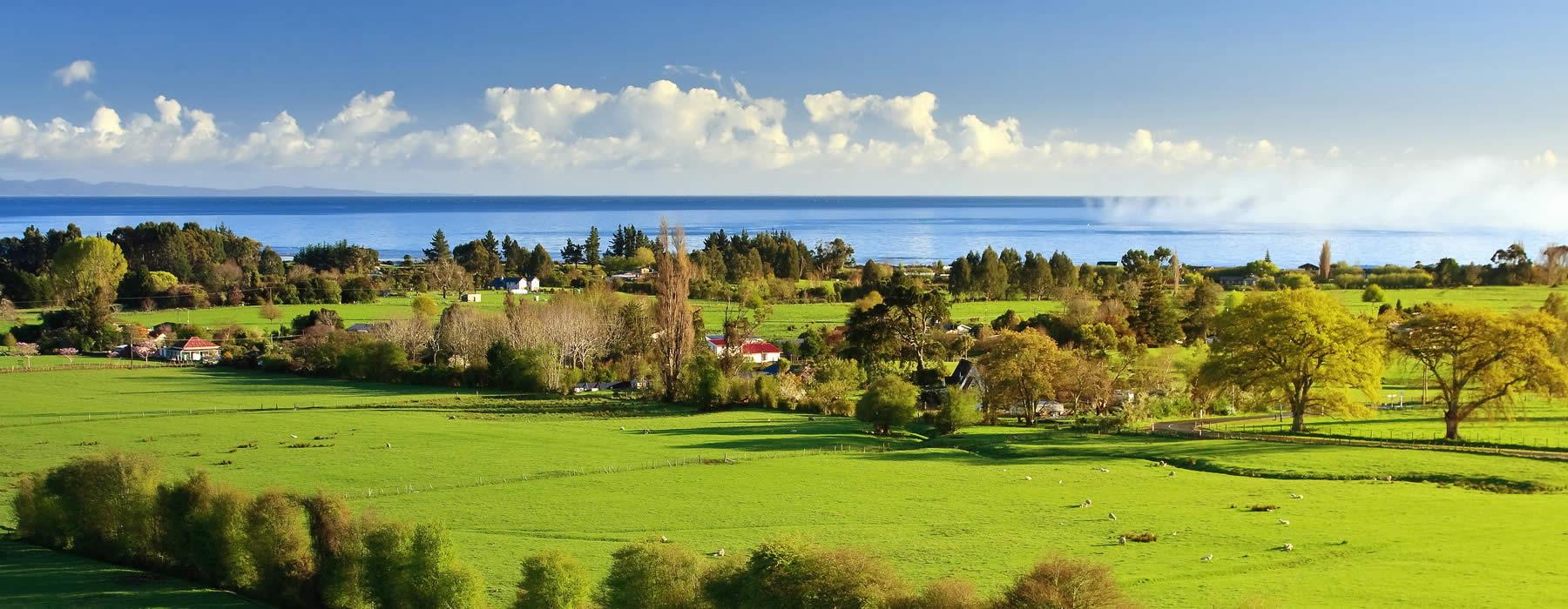 Загородный отдых в Ленобласти и Карелии - загородный отдых с Едем Загород